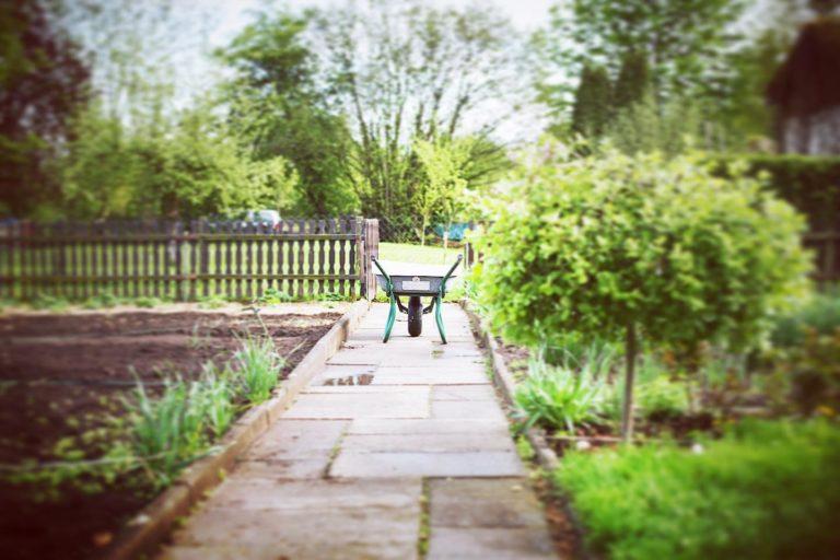 Zuhause mit Kind: Tag 41 – Ordnung im Garten